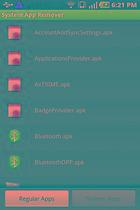 SystemApp Remover - Der volle Zugriff?
