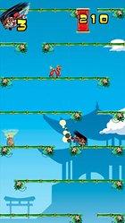 Ninja Falldown – I Keep On Fallin'...