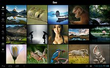 500px -- The Official App
