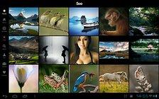 500px - die App zur Foto-Plattform