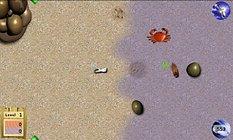 """""""Crab'n Roll (LITE)"""" - schnell mal nach ein paar Meeresfrüchtchen krabbeln"""