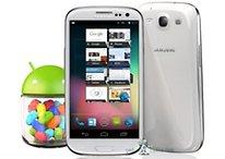 Descarga Android 4.1 Jelly Bean para el Samsung Galaxy S3
