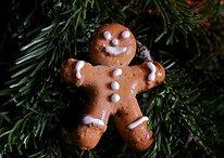 Pourquoi Gingerbread est encore la version d'Android la plus populaire