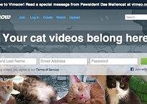 Youtube s'arrête, Gmail est bleu et Sony fait des jeux pour animaux