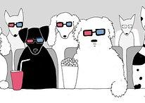 Los perros pueden percibir el 3D, según un experimento de LG