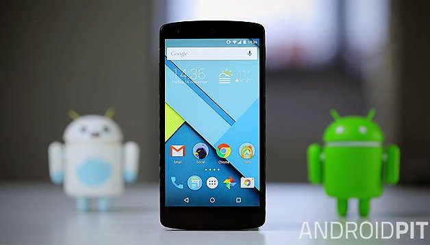 Where can I buy the Nexus 5?
