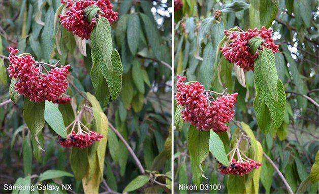 Galaxy NX Nikon 3100 vergleich 628 1
