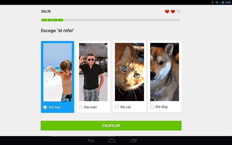 duolingo app progressbar