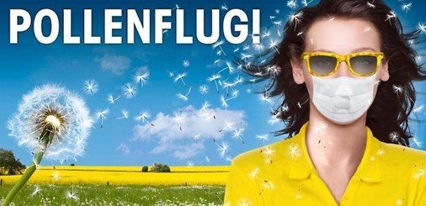 teaser pollenapps