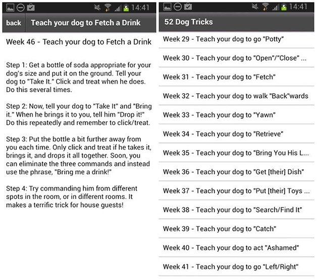 52 dog tricks
