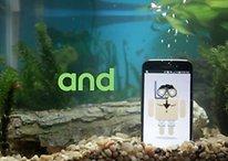 Il Nexus 6 è resistente all'acqua: vi era sfuggito questo dettaglio?