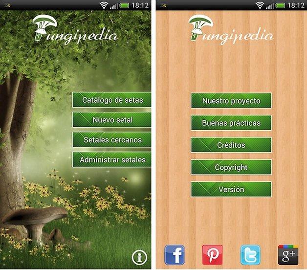 fungipedia 1