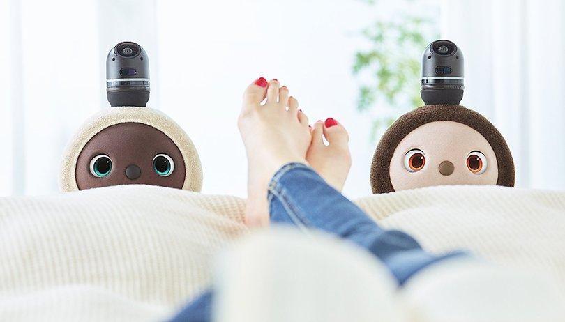 Lovot le robot veut combler nos besoins émotionnels