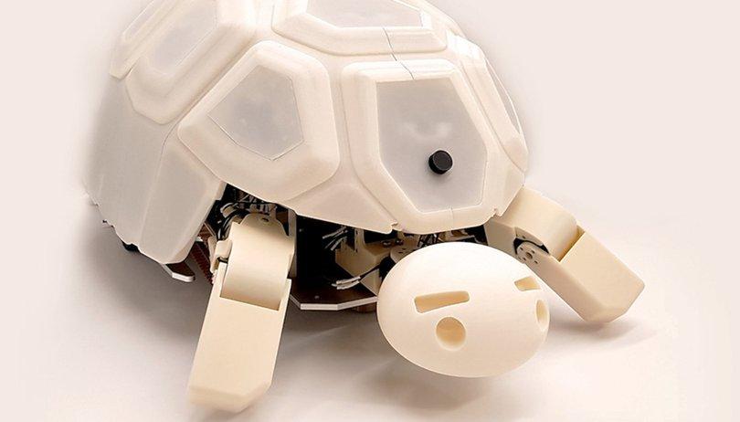 Verhindert diese Roboter-Schildkröte die Rebellion der Maschinen?