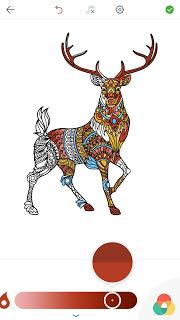Ausmalbilder Tiere Erwachsene Malbücher Für Erwachsene