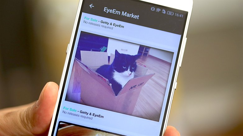 ANDROIDPIT eyeem android cats
