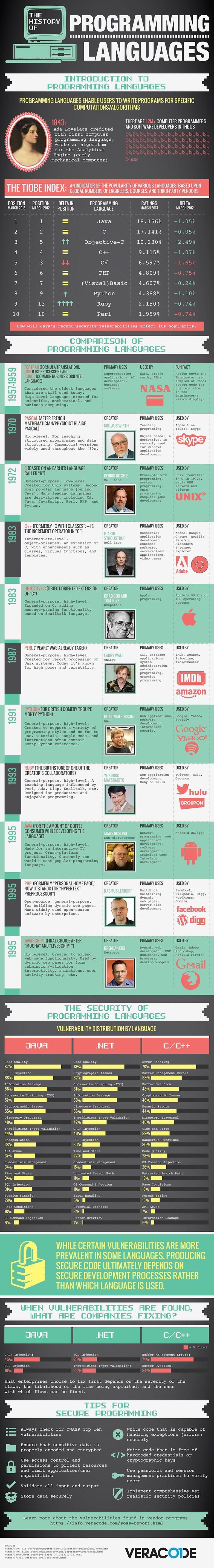 programminginfographic