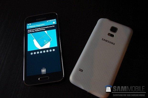 GalaxyS5Mini 13