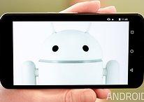 So leert Ihr den Cache des Nexus 6