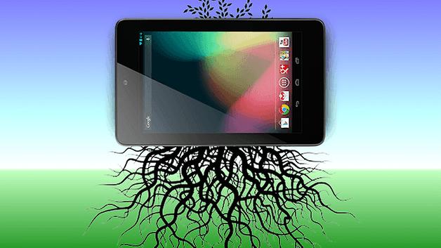 root nexus 7 teaser
