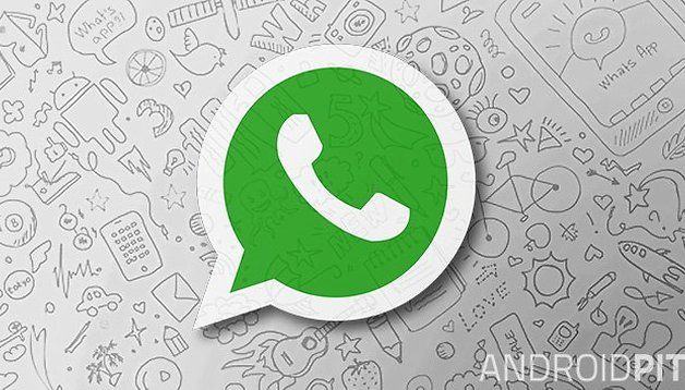 Concerned about your privacy? WhatsApp beta lets you disable read receipt blue ticks