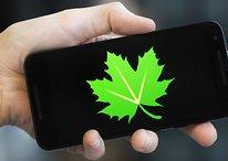 Greenify vs. Doze: o Greenify ainda é útil?