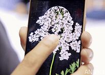 3D Touch und Force Touch: Eine Technologie für die Zukunft?