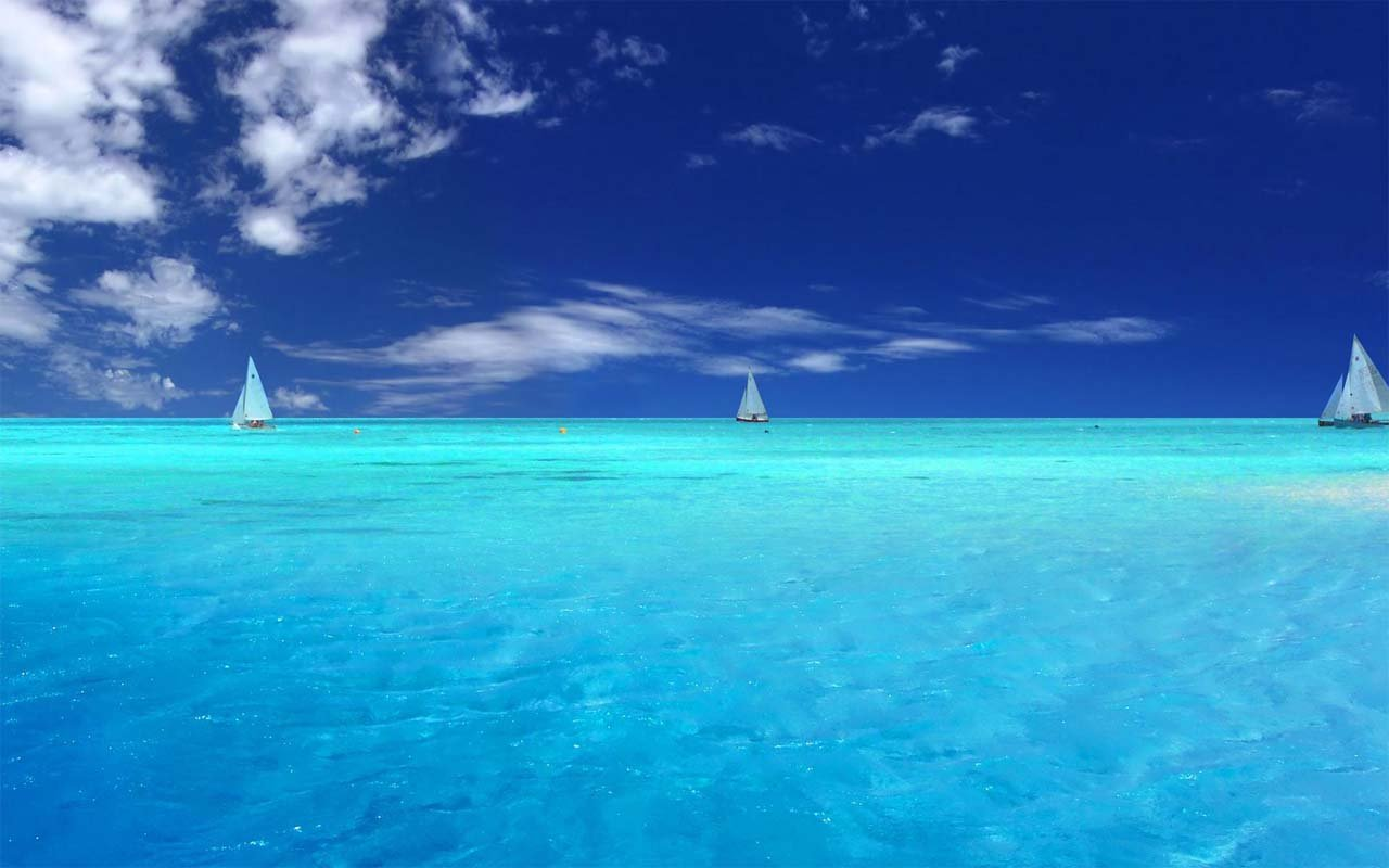 Free Wallpaper Sea Live Worth Watching Wallpapers Of
