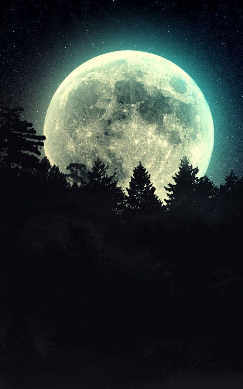 Image Description Moonlight Live Wallpaper