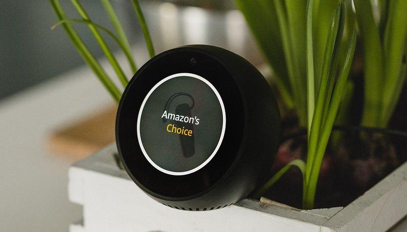 Insolite : vous pouvez utiliser Alexa... avec un poisson qui gigote et qui chante