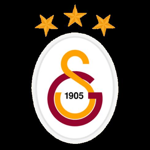 galatasaray sk 2013 logo