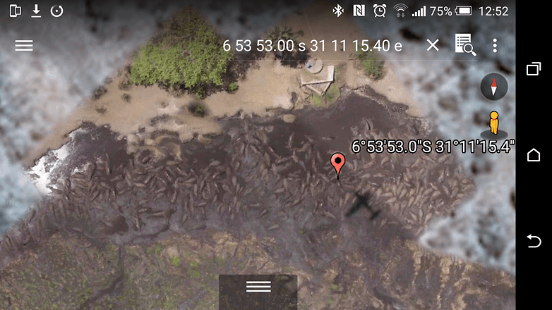 androidpit google earth hippo pool