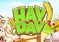 Hay Day: Tricks, Tipps, Cheats, Diamanten bekommen und Strategien