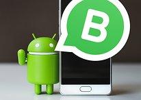 WhatsApp lance son application Business à destination des entreprises