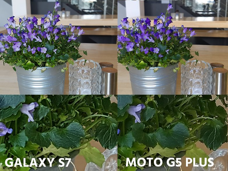 AndroidPIT camera comparation s7 vs moto g5 plus macro detail