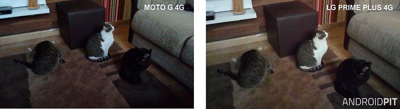 foto moto g vs prime plus NOITE
