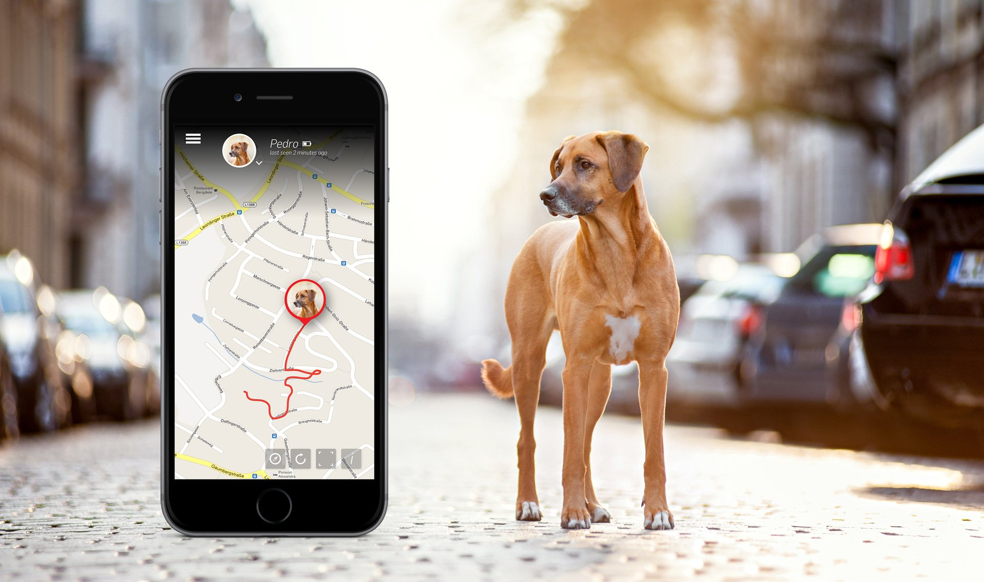 Phone Location Tracker >> Deal: Tractive GPS pet tracker - 23% off   AndroidPIT
