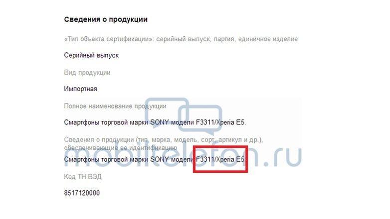 informe ruso
