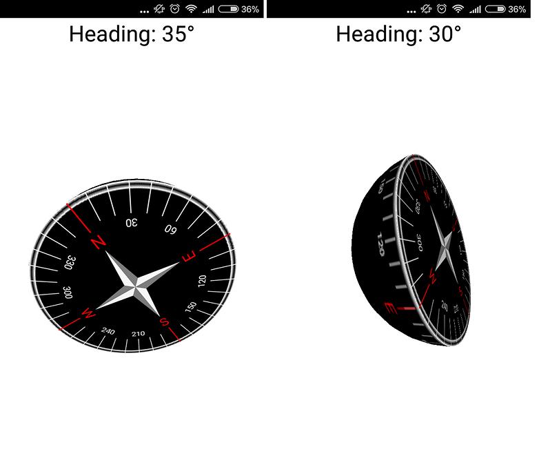 marine compass 02