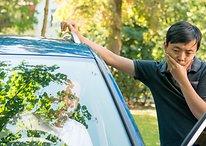 Apple CarPlay è supportato dalla vostra futura auto? È arrivato il momento di scoprirlo