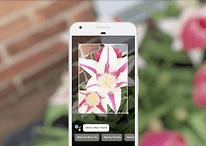Google I/O : les 5 choses que même les néophytes devraient savoir