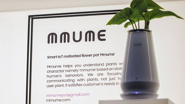 mmume