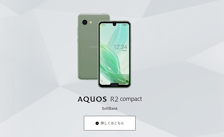 The Sharp Aquos R2 compact is the first dual-notch phone