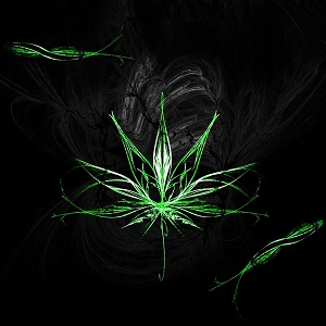 Rasta Weed Live Wallpaper Android Forum