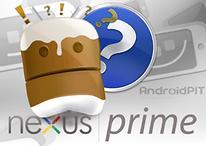 [Rumor] Fotos del Nexus Prime ¿o del Galaxy Nexus?