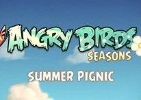 """[Vídeo] Angry Birds - la próxima actualización Angry Birds Seasons """"Summer Pignic"""""""
