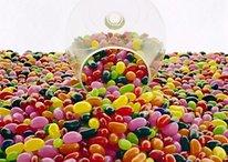 Android 5.0 Jelly Bean en el tercer trimestre del 2012