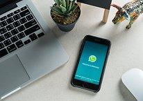 WhatsApp: messaggi che si autodistruggono o programmabili?