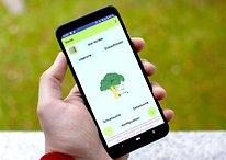 Digitale Einkaufsliste: Die 5 besten Apps im Überblick
