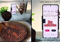 Il filme en live un Samsung Galaxy S21 immergé dans l'eau depuis 11 jours